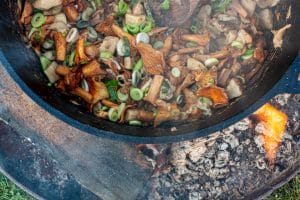 Pilze und Fruehlingszwiebeln